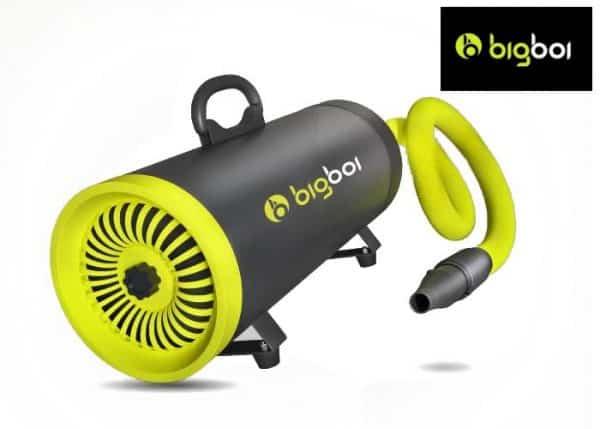 BigBoi BlowR Mini PLUS