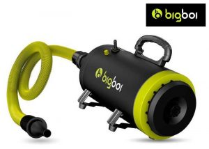 BigBoi Blowr Mini Car Dryer